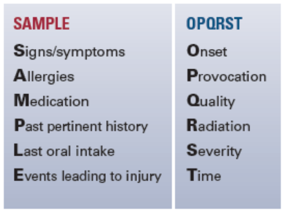 Figure 1. Patient assessment mnemonics may be used when collecting information about patients.